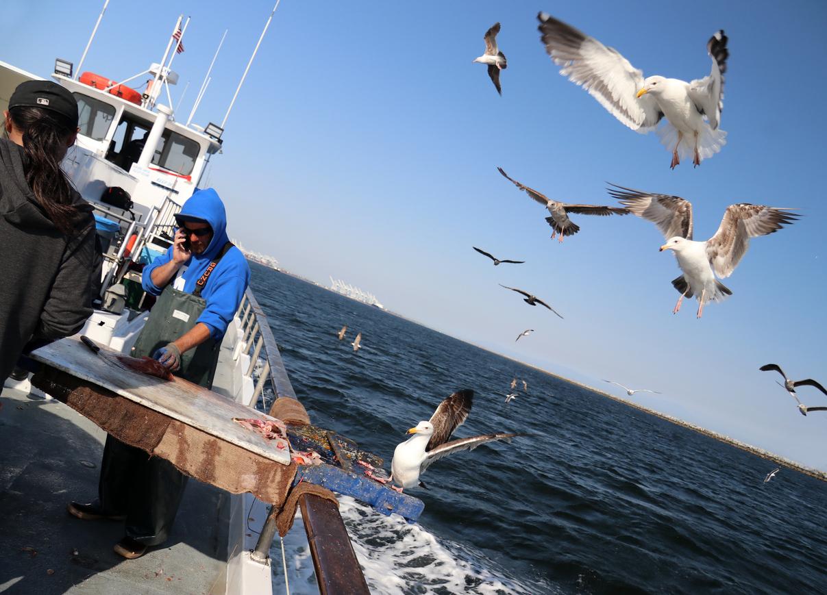 Ulovlig fiske i verden