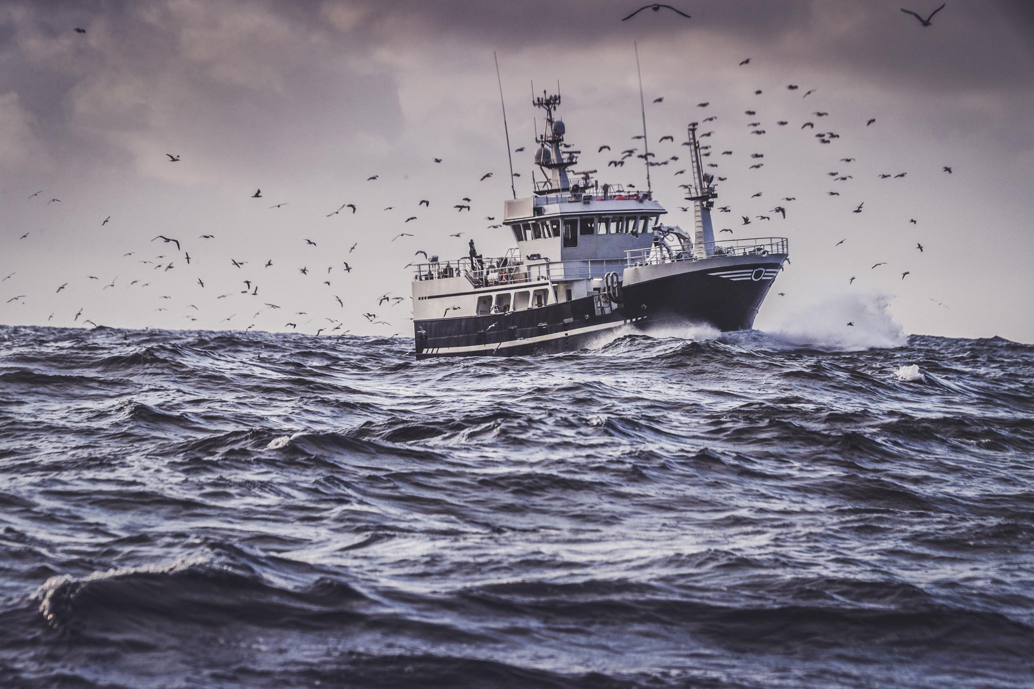 Norges historie med fisk